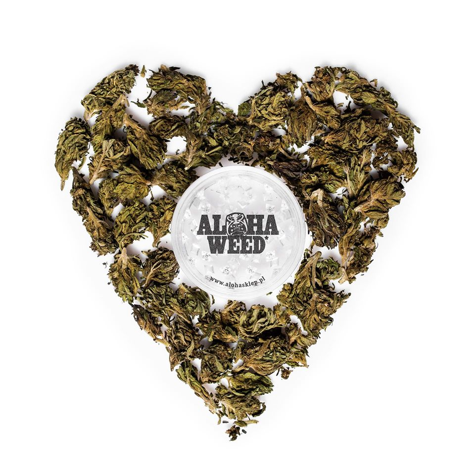 Aloha Weed już w sprzedaży! Nowy singiel od VNM-a! || #DziejeSie